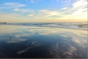 beach-s-sponsler
